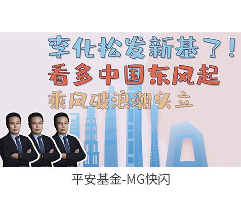 平安基金李华松动画广告
